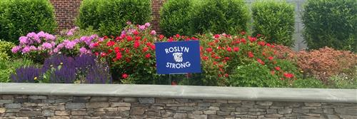 Roslyn Strong!